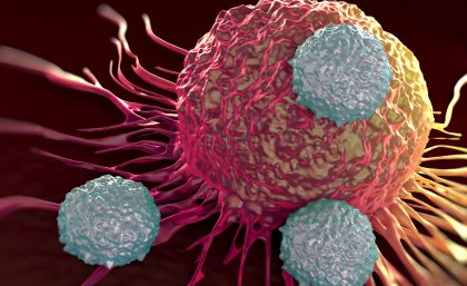 T-cells attacking a tumor cell