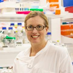 Diabetes research challenging but paramount