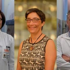 UQ recognised in 'Oscars' of Australian science