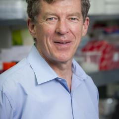 Professor Ian Frazer named a Councillor for the Australian Academy of Science